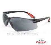 Kính bảo hộ Everest EV-204